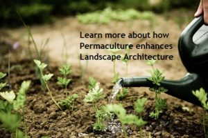 image: how permaculture enhances landscape architecture