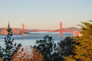 image: landscape design bay area