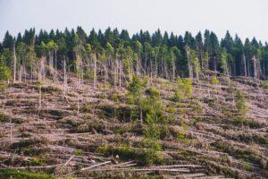 image: factors of climate change