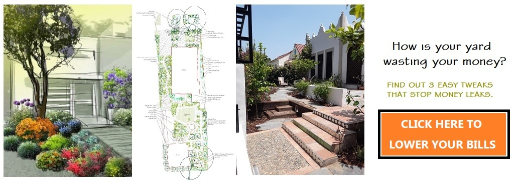 Do You Need Residential Landscape Design For Your Property