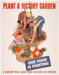 image: victory garden plan