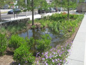 image: what is green infrastructure
